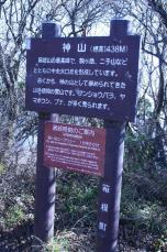 Kamiyama_3.JPG
