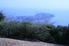 Shiroyama_3.JPG