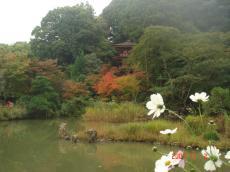 Yamanobe_3.5.JPG