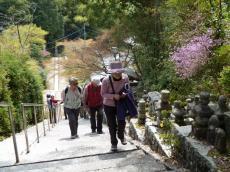 Nara2011_02.JPG