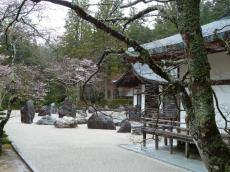Nara2011_09.JPG