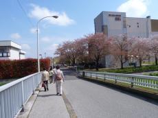 tokyo2-2.jpg