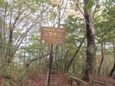 ookura-2.JPG